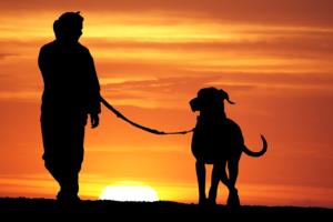 homem e cachorro2